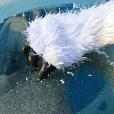 Raschia ghiaccio Yeti