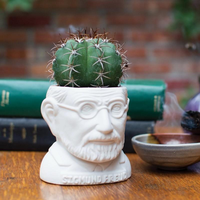 Mini vaso Freud