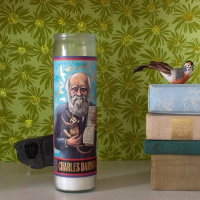 Candela Charles Darwin