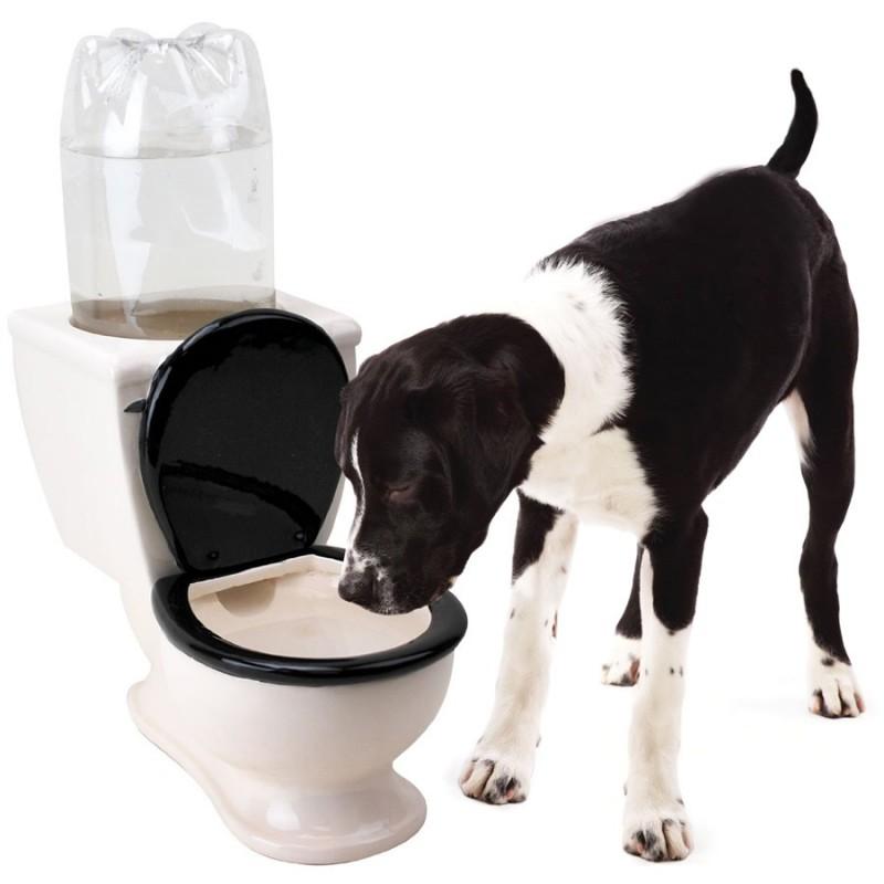 Abbeveratoio a forma di WC