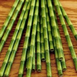 Cannucce Bambù