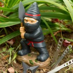 Nano da giardino Ninja