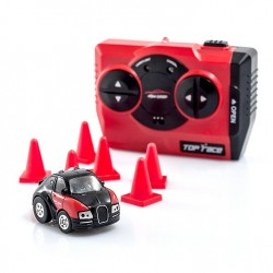 Mini auto radiocomandata