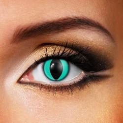Lenti a contatto occhi di gatto - Azzurre