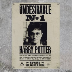 Targa Harry Potter Indesiderabile n.1 (A5)