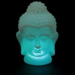 Buddha Luminoso