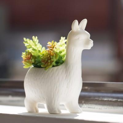 Mini vaso Lama
