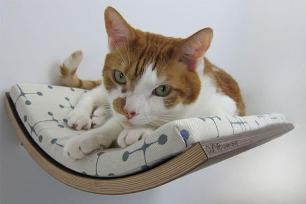 Lettino da parete per gatti dottorgadget for Parete attrezzata gatti