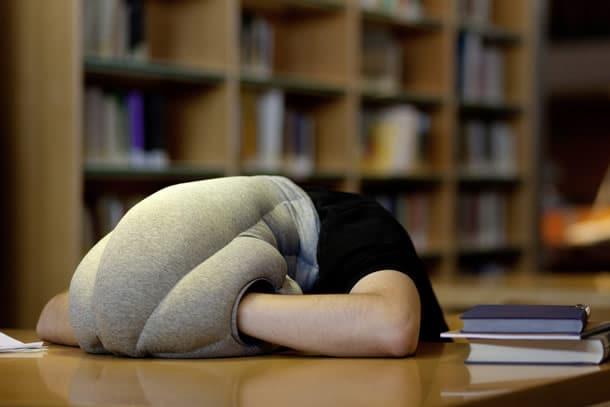 Cuscino Per Dormire Seduti.Il Cuscino Da Struzzo