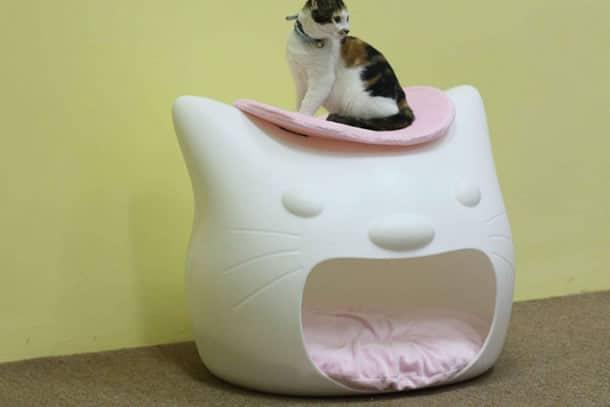 Kitty Meow, Il letto per gatti  DottorGadget