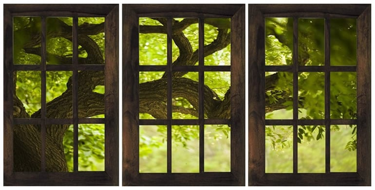 Decalcomania casa nel bosco dottorgadget - La finestra sul giardino ...