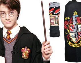 Salviettone Harry Potter