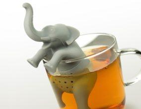 Infusore Elefante