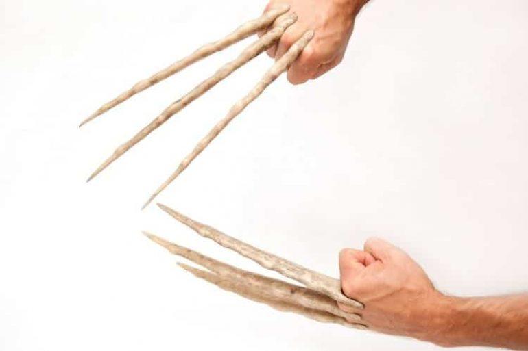artigli wolverine  Artigli ossei di Wolverine   DottorGadget