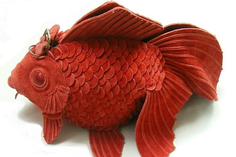 Borse pesce rosso dottorgadget for Carpa pesce rosso