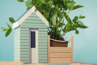 Casetta per piante e fiori