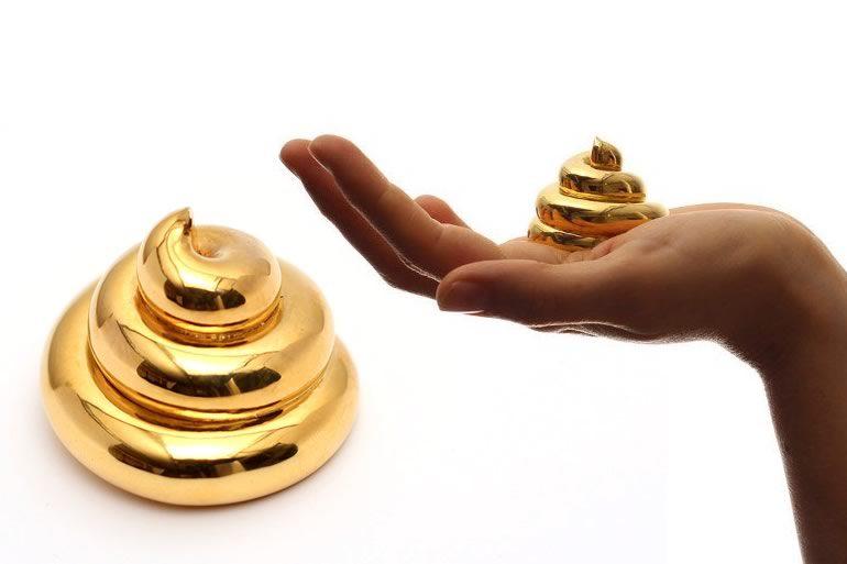 La cacca d 39 oro perfetta dottorgadget - Cacca nel bagno ...