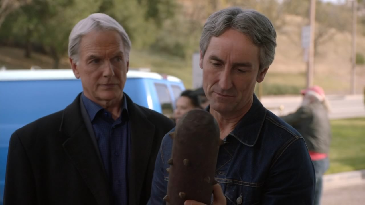 Mike Wolfe in NCIS