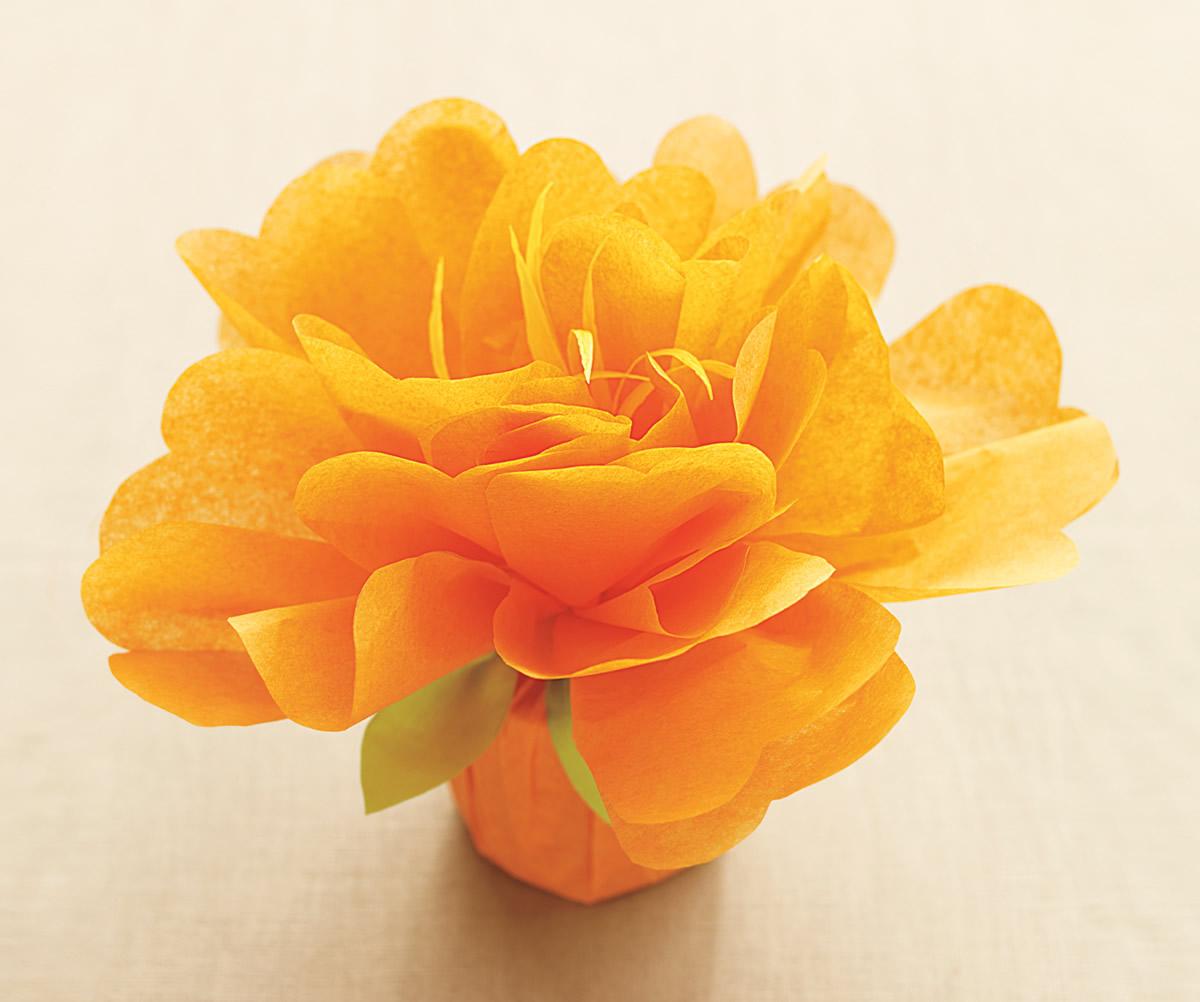 Pacchetto con fiore di carta velina