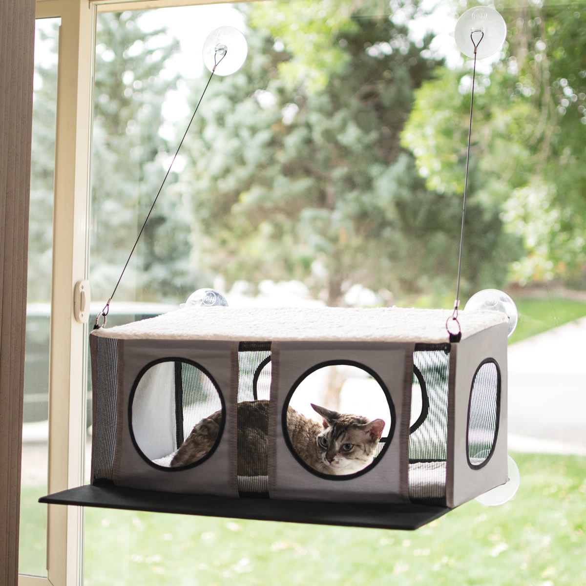 Casetta per gatti da finestre