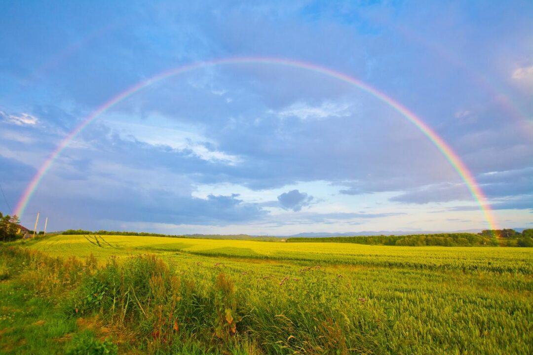 Quanti-colori-ha-un-arcobaleno